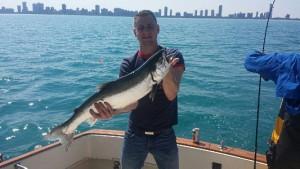 large coho salmon